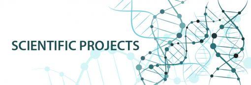 projekty-naukowe-doktoraty